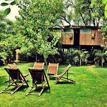 Periyar Tour with Treehouse Package