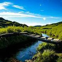 Dzukou valley Trek Package