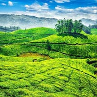 Classical Kerala 07 Days Tour