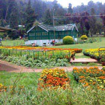Ooty Coonor Package Ex Bangalore