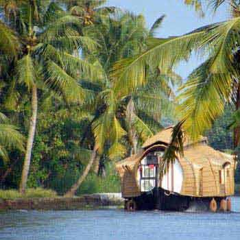 Kerala Backwater Tour in Alleppey