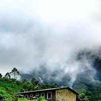 Luxury Escapade to Munnar, Kumarakom and Kovalam | 6 Days 5 Nights Package