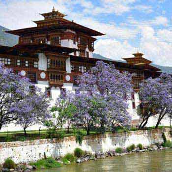 Amazing Bhutan Tour Package