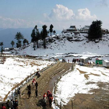 Exclusive Shimla Hills Tour