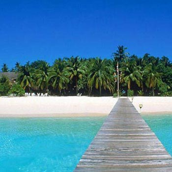 5Night 6Days ( Andaman Exotic Tour)