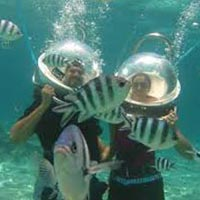 Andaman Delight Tour 3 Nights and 4 Days
