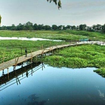 Assam Nature  Tour