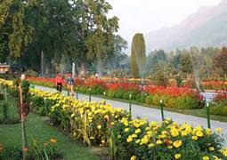 Panorama of Kashmir Tour
