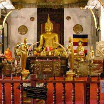 Splendid Tour of Sri Lanka Tour