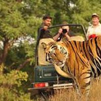 Jim Corbett with Nainital Tour