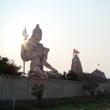 Half Day Tour for Dwarka
