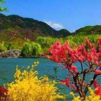 Fascinating Kashmir Tour