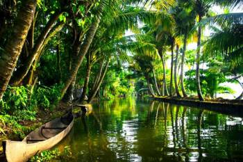 Kerala Delight Tour
