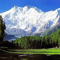 Kashmir Snowy Delight @50% Off Tour