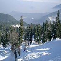 Snowy Chill Kashmir Tour