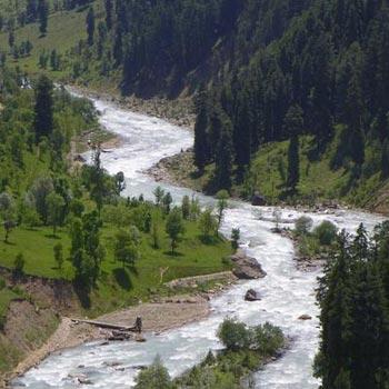 Shayas Romantic Kashmir Package