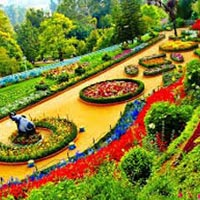 Tamil Nadu Tour Packages 7 Nights 8 Days
