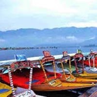 Srinagar 2 Package For 4 Days With Day Excursion To Gulmarg And Pahalgam