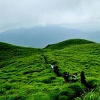 Wayanad 3 Star Weekend package for 3 Days
