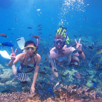 From Dubai: Snorkeling Trip In Fujairah With Transfer Tour