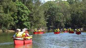 Cruise in a Canoe Boat Tour