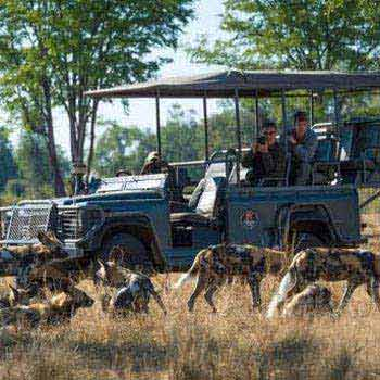 10 days – Zambia Safari Affordable Package