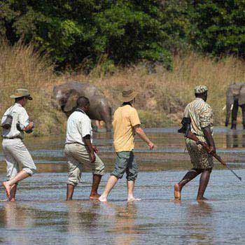 Safari Package For Zambia & Botswana Tour