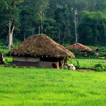 Beautiful Wayanad Trip Package