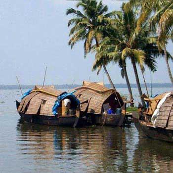 Cochin Munnar Honeymoon Package