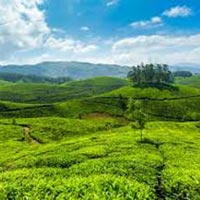 Majestic Kerala Hill Tour