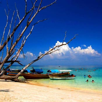 Fascinating Andaman Tour