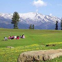 Kashmir Valley Family Trip Tour