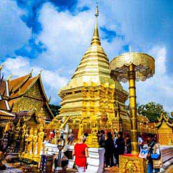 Free & Easy Chiang Mai Tour
