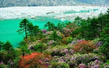 Honeymoon Special Gangtok with Darjeeling Tour