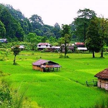 North Bengal Tour