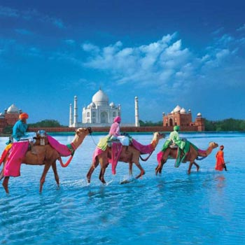 Golden Triangle Tour For 5 Days