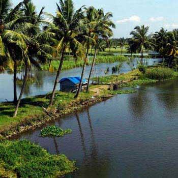 Cochin - Thekkady - Cochin Tour
