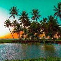 Cochin - Munnar - Kumarakam - Cochin Tour