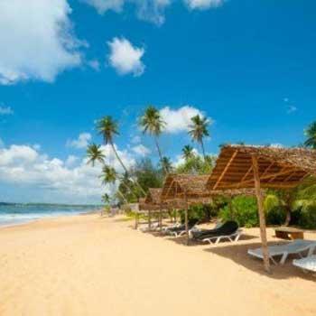 Srilanka Beach & City Tour