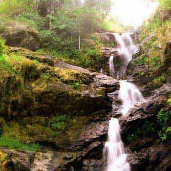Dreamy Coorg Tour Package