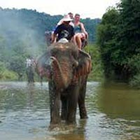 3 Nights/ 4 Days Andaman Honeymoon Trip Tour