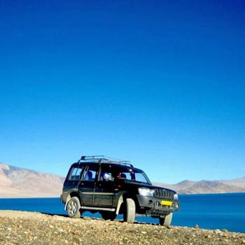 Ladakh Safari Tour
