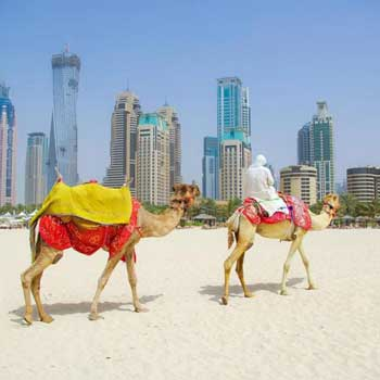 Wonderful Dubai Trip Tour