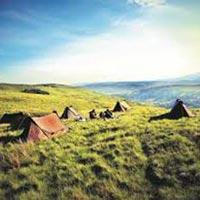 08 Days Kenya Maasai Mara, Lake Nakuru and Tanzania Serengeti,Ngorongoro Crater. Package