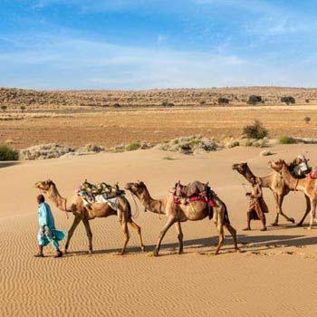 Desert Package