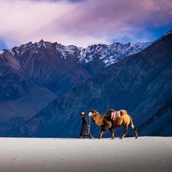 Ladakh Tour with Kashmir