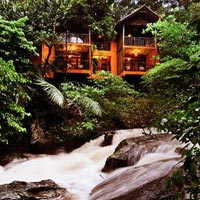 3 Days Wayanad Tour With Vythiri Treehouse package