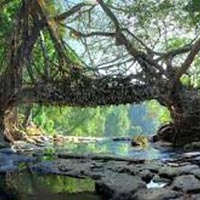 Beautiful Shillong with Guwahati Package