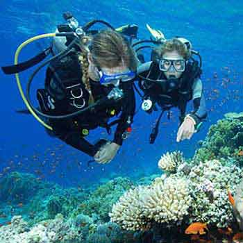 Honeymoon in Exotic Andaman Tour
