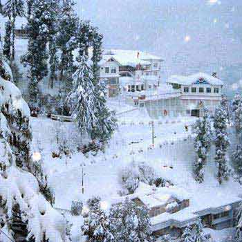 Beautiful Shimla Tour With Kashmir